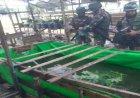 Bina Ketahanan Pangan, Peserta Pelatihan Pratugas Sat BKO (Satgas Apter) Dampingi Petani Budidaya Ikan Lele